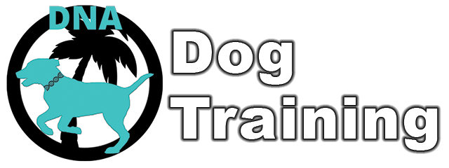 DNA Dog Training – Tampa Bay, Florida
